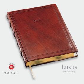 Assistent Luxusausführung